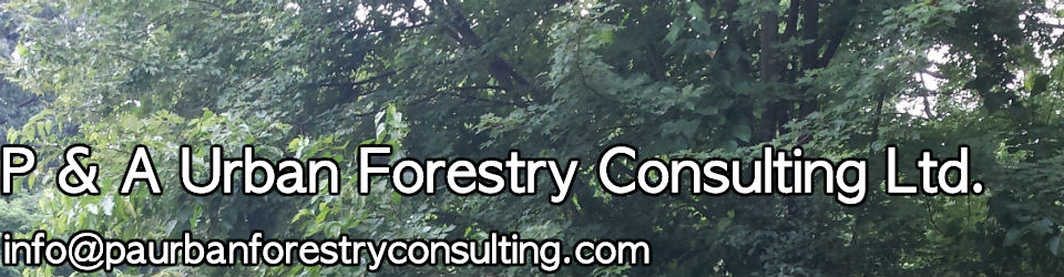 P & A Urban Forestry Consulting Ltd.
